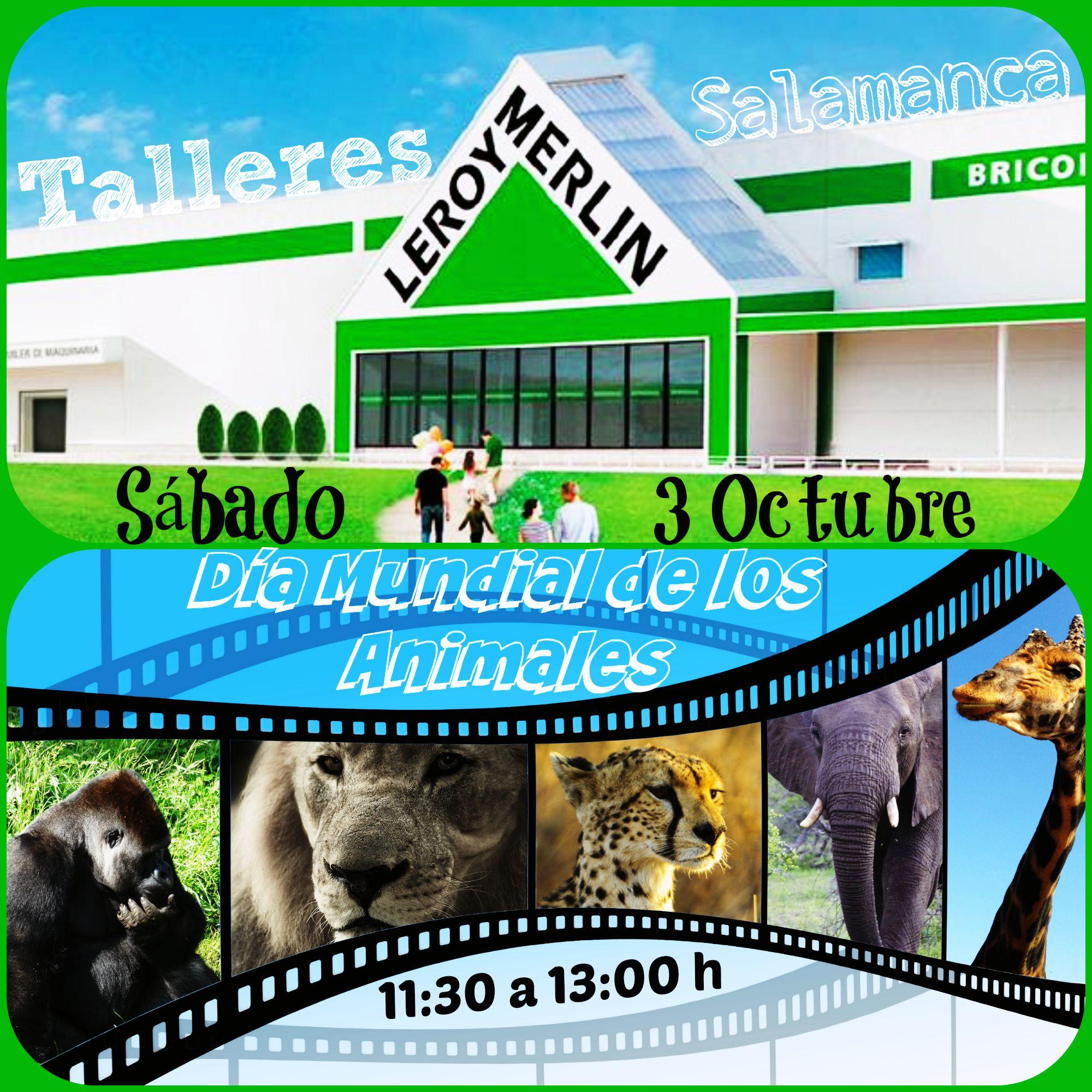 D a mundial de los animales en leroy merlin salamanca for Telefono leroy merlin salamanca